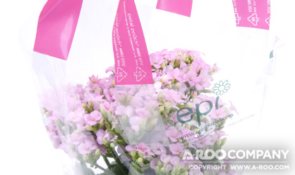 Earth Friendly Petal Pouch with EPI Additives