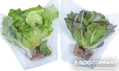 Heads of Lettuce in our HYDROPONIC-14x9x5-PLAIN Sleeves