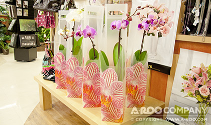 Orchid Gift Tote In-Store Display
